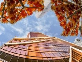 Лот № 1270, Меркурий Сити, Аренда офисов в ЦАО - Фото