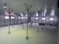 Аренда складских помещений, Дмитровское шоссе, Грибки, Московская область558 м2, фото №2
