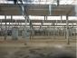 Производственные помещения в аренду, Горьковское шоссе, Ногинск, Московская область3000 м2, фото №4