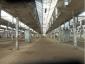 Производственные помещения в аренду, Горьковское шоссе, Ногинск, Московская область3000 м2, фото №5
