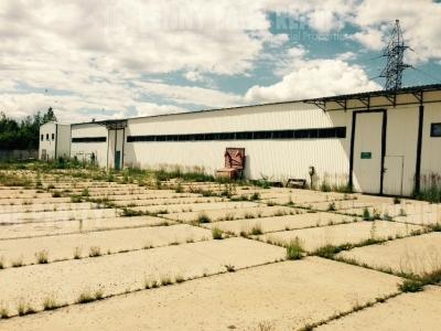 Аренда производственных помещений, Ленинградское шоссе, Московская область, площадь 700 м2, деление от 700 м2  фото №6